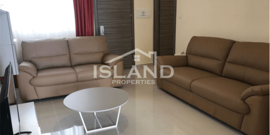 Two Bedroom Penthouse In Msida
